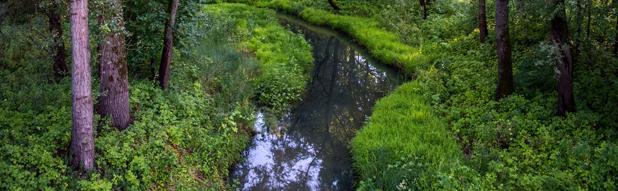 Река Наровлянка