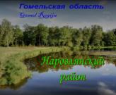 Продажа объектов недвижимости Наровлянского района